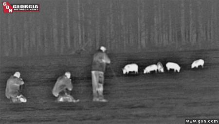 Thermal Hog Hunting - GON