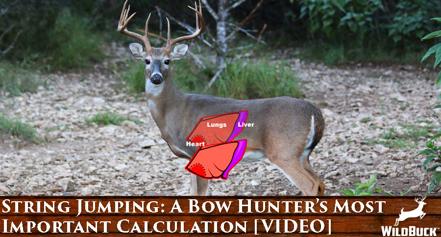 String Jumping: A Bow Hunter's Most Important Calculation [VIDEO]