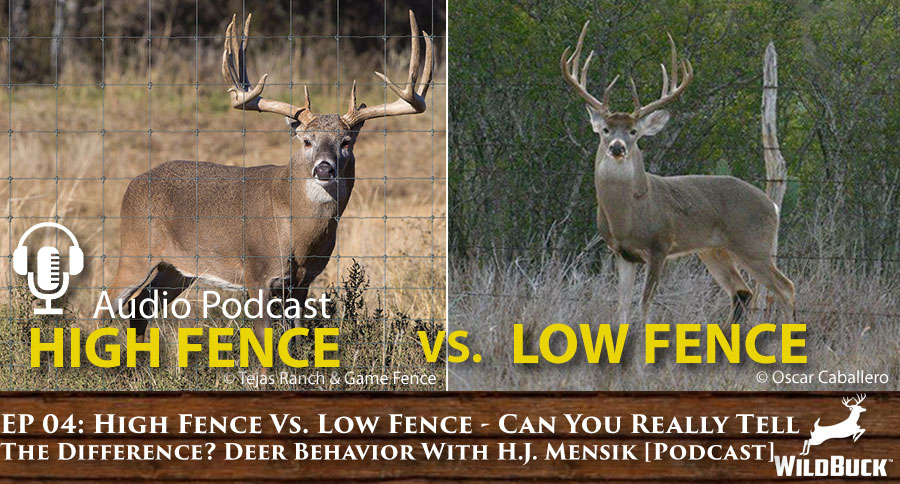 EP 04: High Fence Vs. Low Fence – Can You Really Tell The Difference? Deer Behavior With Haiden James Mensik [PODCAST]