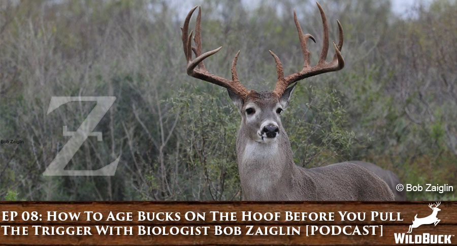 EP 08: How To Age Bucks On The Hoof Before You Pull The Trigger With Wildlife Biologist Bob Zaiglin [PODCAST]