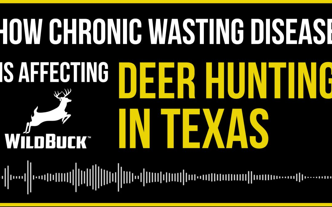 How Chronic Wasting Disease Is Affecting Deer Hunting In Texas [VIDEO]